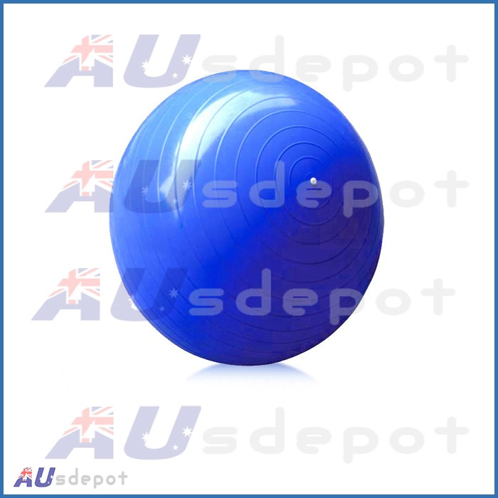 Yoga Gym Pilates Fit Anti Burst Swiss Ball Pump 65cm New